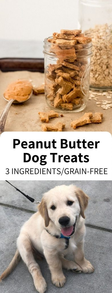 Homemade Dog Treats made easy with just 3 ingredients, ready in 20 minutes! Wheat free and full of peanut butter, your dog or puppy will love these simple snacks. #dog #treat #puffin #homemade #puppy #dogtreat #grainfree #peanutbutter #easy #vegan #snack
