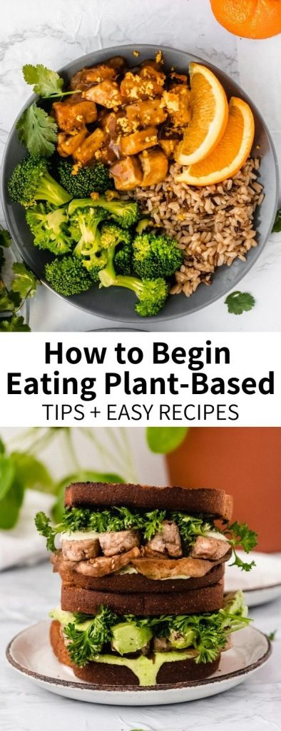 Looking to begin a plant-based/vegan lifestyle or just hoping to eat more vegetables every day? Congratulations! You're making a wonderful decision for the environment. This guide will explain where to start with some staple recipes, along with tops + tricks for maintaining a plant-forward kitchen.