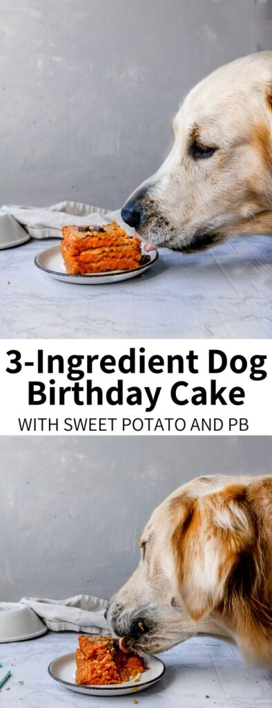 This Homemade Dog Birthday Cake Recipe is made with sweet potatoes, brown rice, and peanut butter! It's flour-free and a great special treat for your furry friend on their special day.